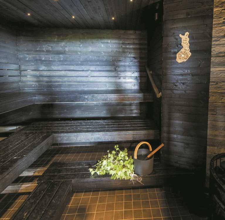 rodzaje saun